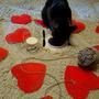 О такой жизни даже и не мечтают многие дачные коты