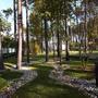 Каменистые ленты в саду