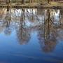 Весеннее отражение