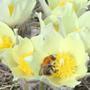 Весна на  Урале
