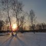 вечернее солнышко меж двух берёзок