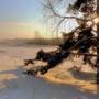 светлое утро нового дня