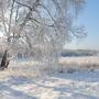 Красивый зимний день