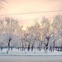 Январский городской закат