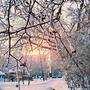 Яркое, красочное солнце украсило белый январь!