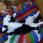 Очень любит спать на спине, иногда такие позы, такое наслаждение в них...  Умеют коты получать удовольствие, прям завидно...