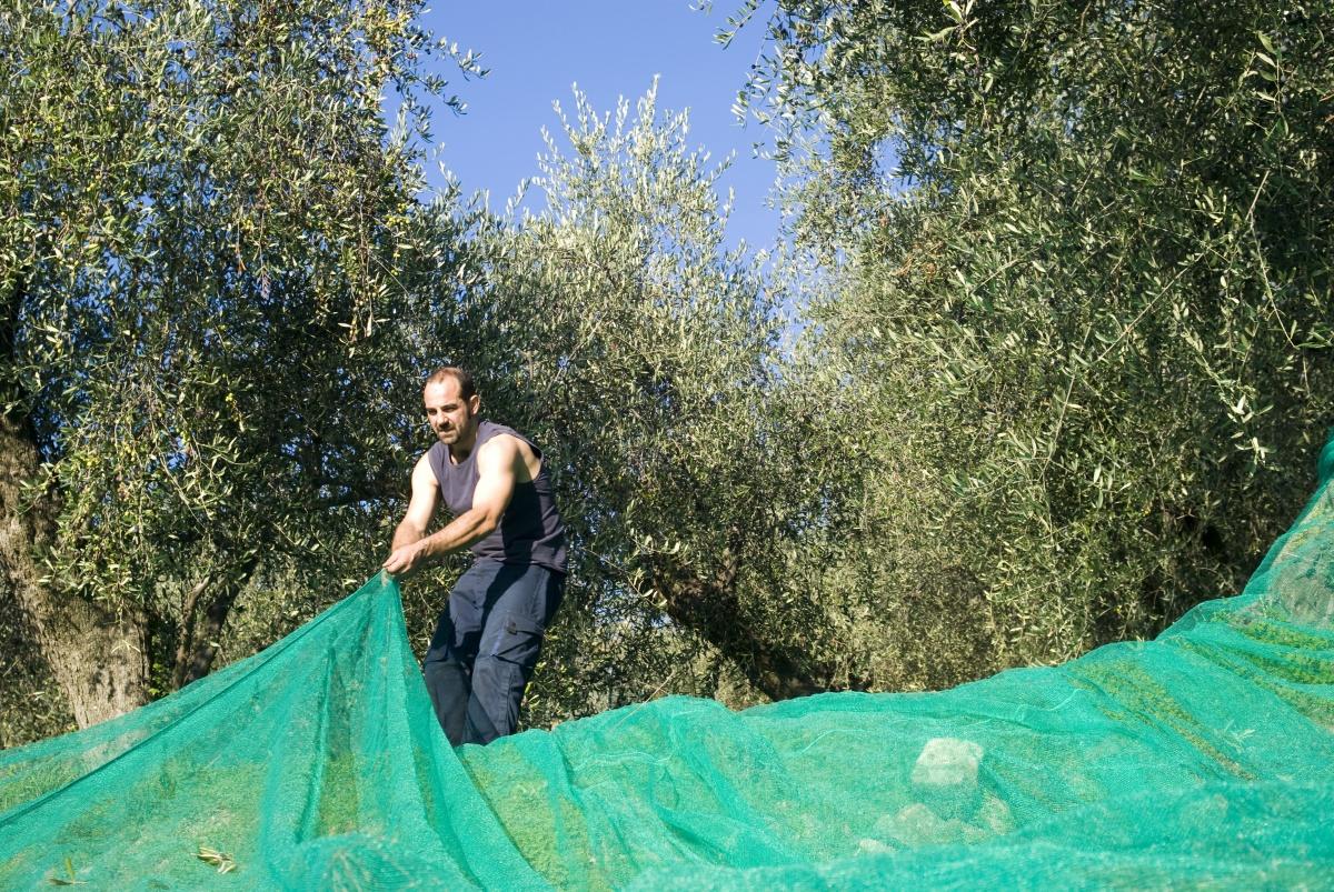 Шумоизоляции ростов дону листы на