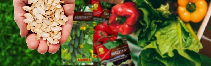 Народное тестирование семян овощей от ООО Агрофирма АЭЛИТА