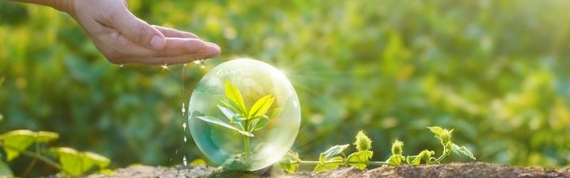 Народное тестирование средств защиты растений компании ТЕХНОЭКСПОРТ