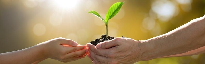 Тестирование препаратов от НПО Биотехсоюз