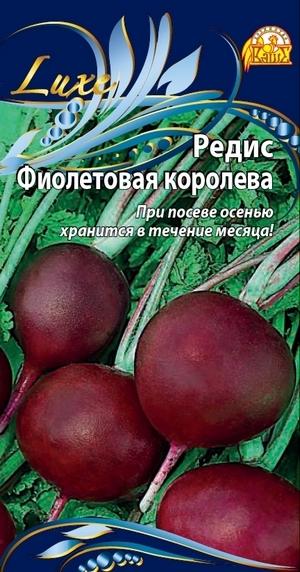 Редис Фиолетовая королева