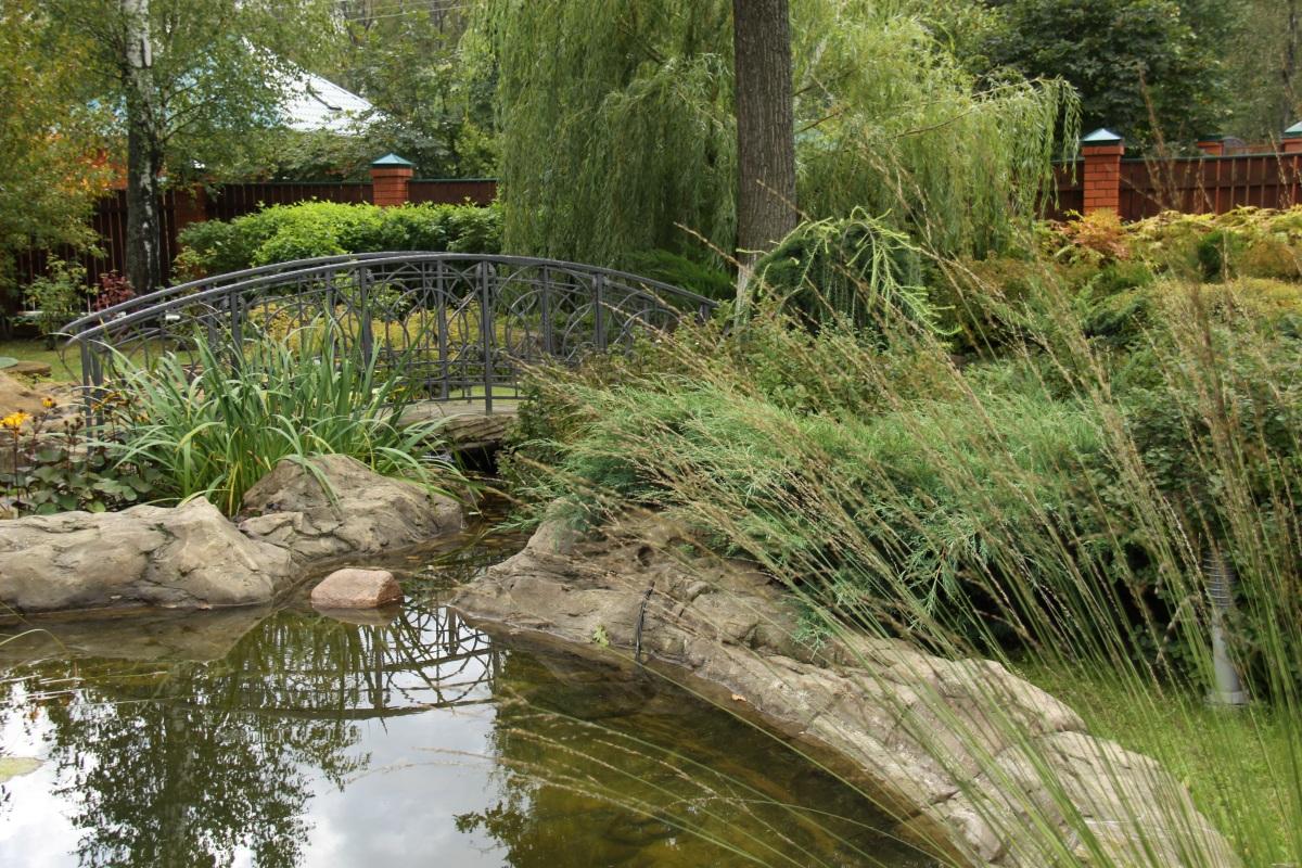 озвучена оранжереи с ручьем мостиком и фонтаном фото ней присутствуют пышные