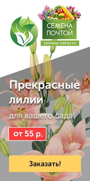 Лучший подарок на 8 марта орел усуга доставки цветов г.омск